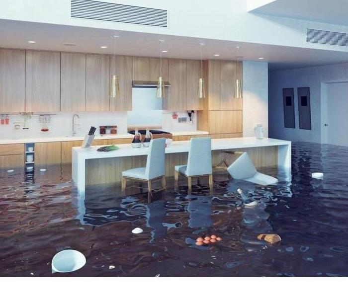 Water Damage Faster to your Nashville, IL Water Damage Event