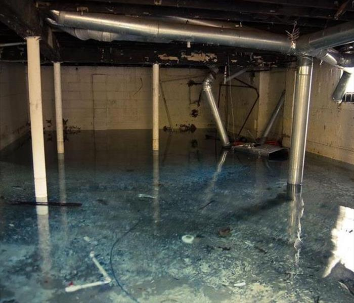 Storm Damage Chester, IL  Residents: We Specialize in Flooded Basement Cleanup and Restoration!
