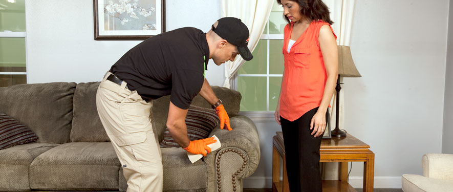 Columbia, IL carpet upholstery cleaning
